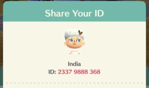 pocket camp ID